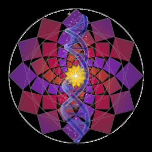 SQRT 2 Spiral 4 SH